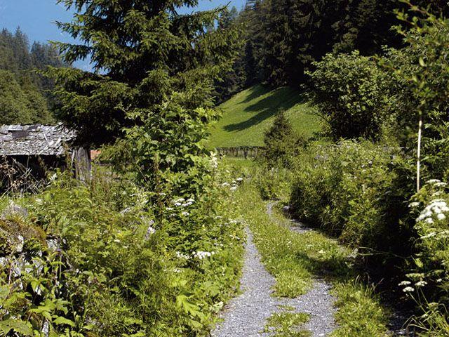 Wanderwege in Grinzens - Grinzens Tirol