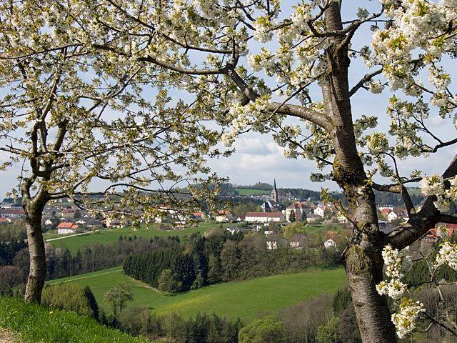 Felsformationen im Landschaftsschutzgebiet Untere Feldaist - Pregarten Oberoesterreich