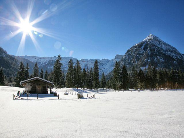 White winter - Achensee Region Tirol