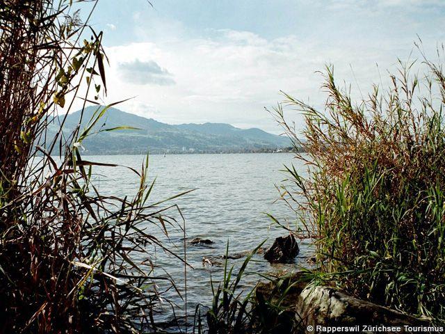 Lacul superior Zuerich Central Switzerland