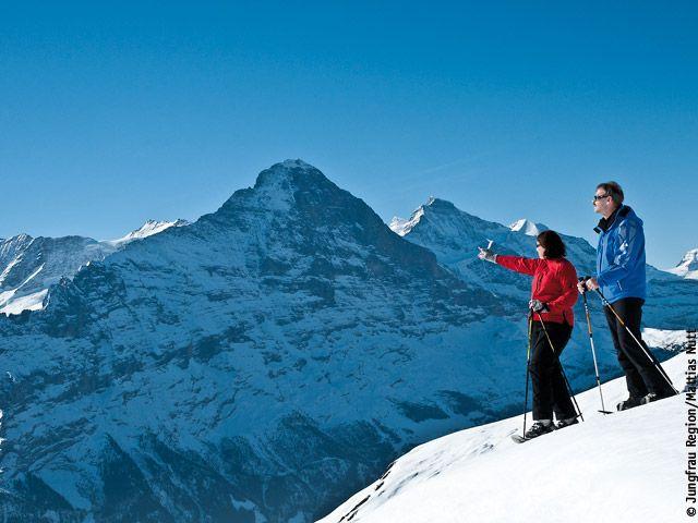 Jungfrau Region Berner Oberland