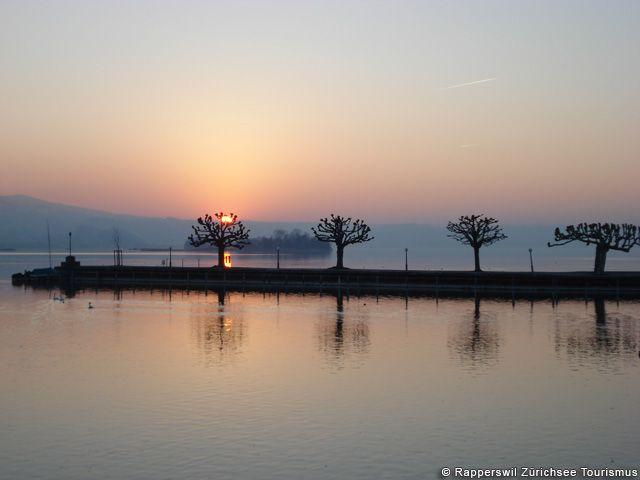 Sonnenuntergang am Zürichsee - Zuerichsee