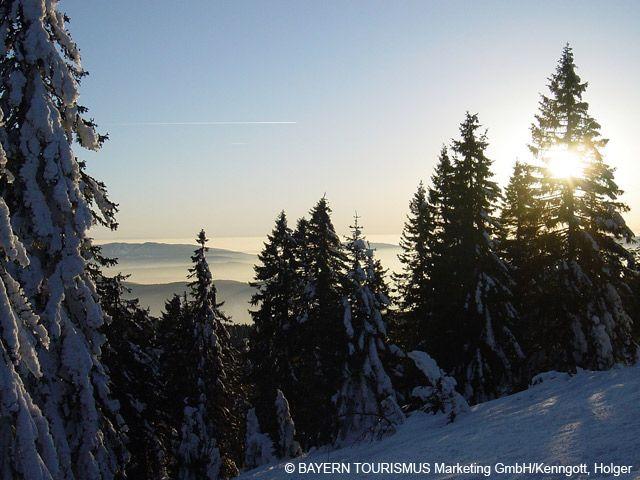 Wintermärchen am Arber - Bavaria
