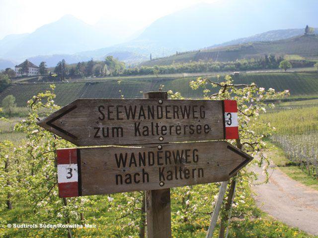 Südtirols Süden - Suedtirols Sueden Suedtirol