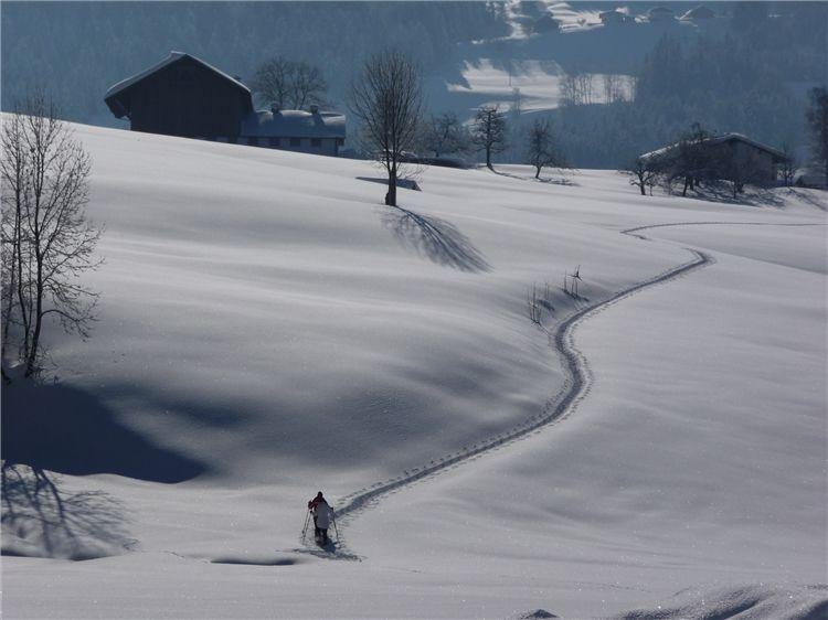 Schneeschuhwandern - Alberschwende Vorarlberg