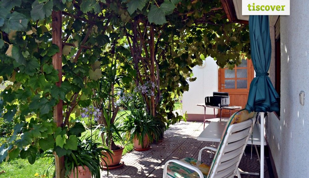 View from outside In summer - Apart Haus Florian Imst