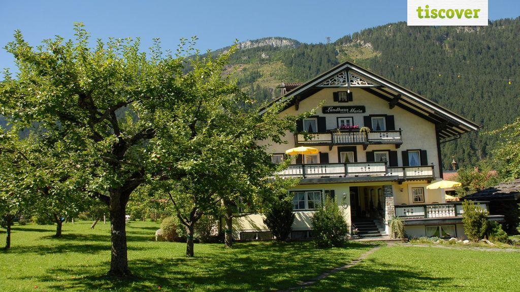 View from outside In summer - Ferienwohnungen Kroell Mayrhofen