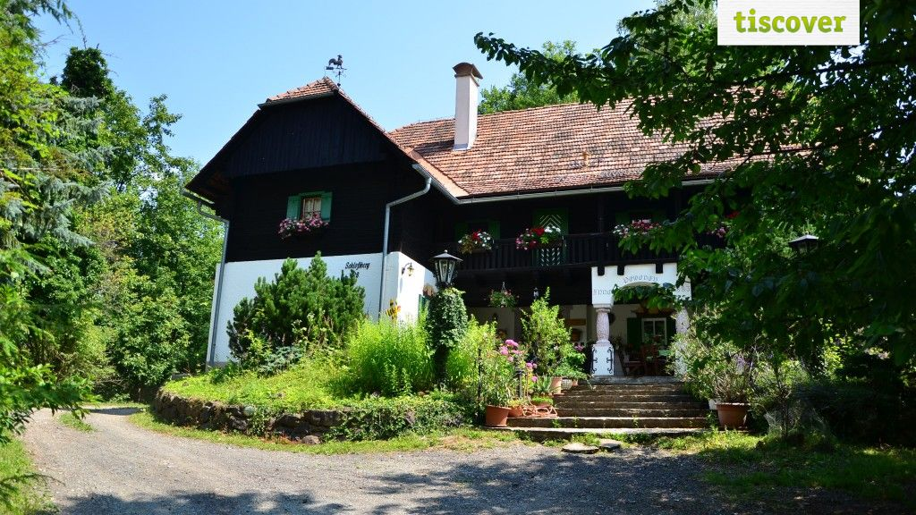 View from outside In summer - Appartement / Haus Powoden Leutschach