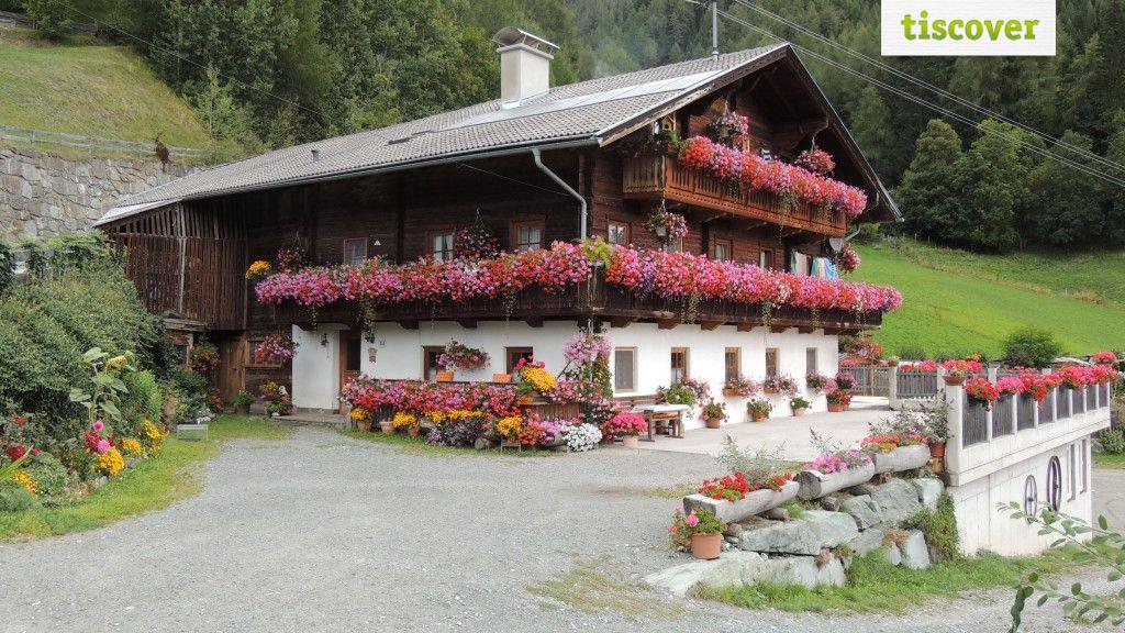 View from outside In summer - Tolahof Virgen in Osttirol