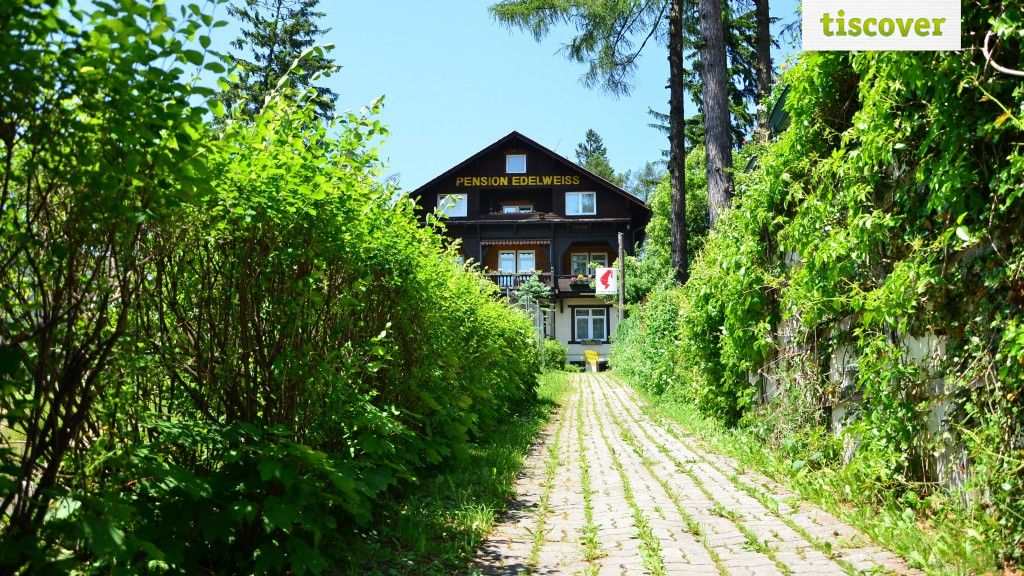 View from outside In summer - Gasthof-Pension-Cafe Edelweiss Semmering