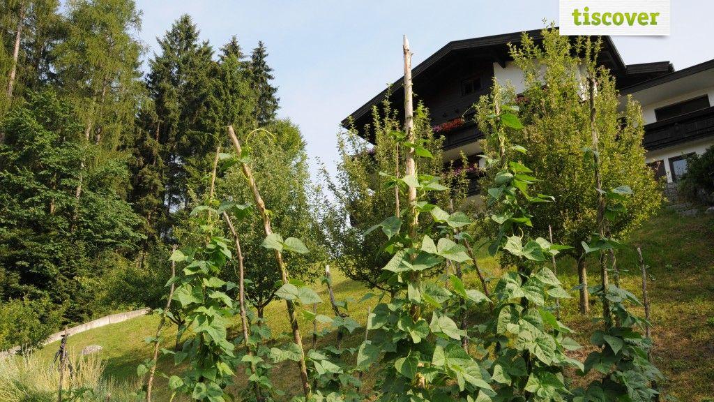 Aussenansicht im Sommer - Haus Waldheim Kramsach