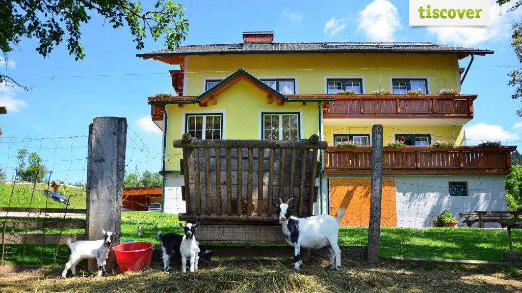 Garten  - Huberhof St. Kathrein am Offenegg