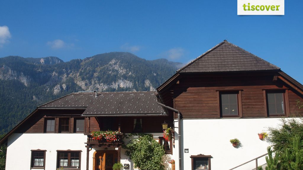 View from outside In summer