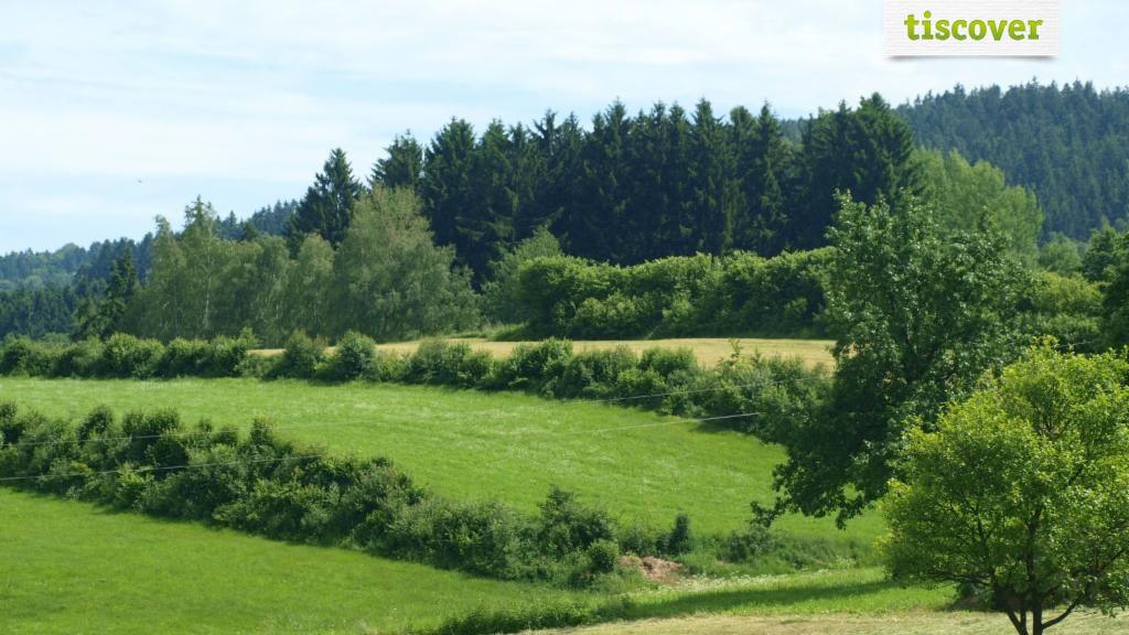 Ulrichsberg in der Ferienregion Böhmerwald im Sommer - Ulrichsberg Oberoesterreich
