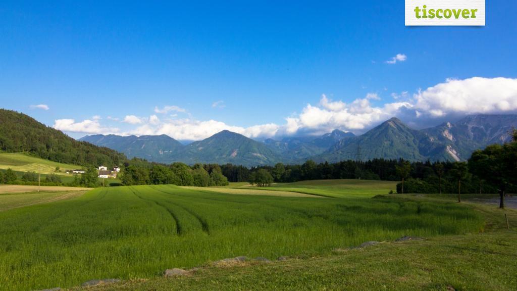 Ludmannsdorf im Sommer - Ludmannsdorf Kaernten