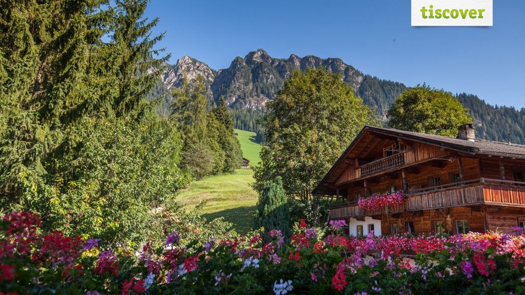 Appartement Alpina Alpbach 3 Edelweiß Privatvermieter